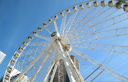 Ferris wheel (Cleaning Work)